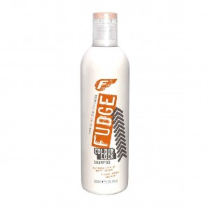 Fudge Color Lock Shampoo